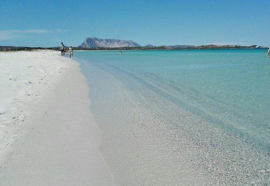 Tra le 10 migliori spiagge in Italia c'è anche La Cinta di San Teodoro
